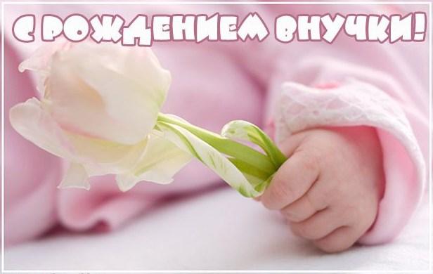 с новорождённой внучкой картинки